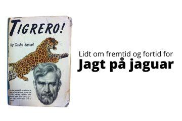 Jagt på jaguar