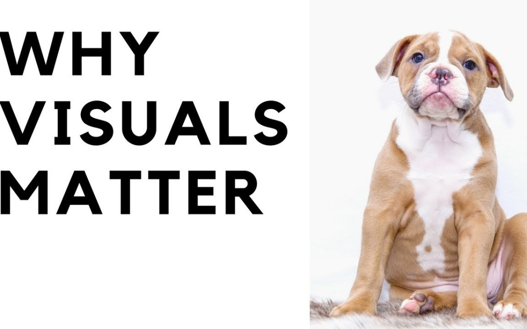 Video Series: Why Visuals Matter Online