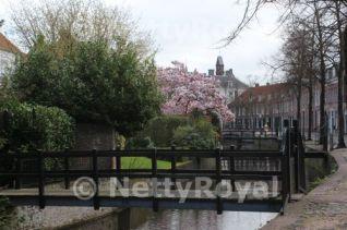 The beautiful Zuidsingel