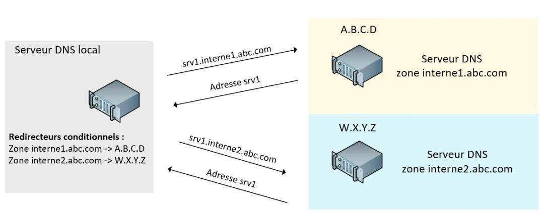 DNS20.jpg