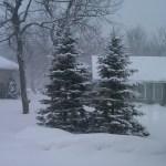 2.10.13 SNOW