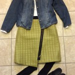 Skirt Wardrobe
