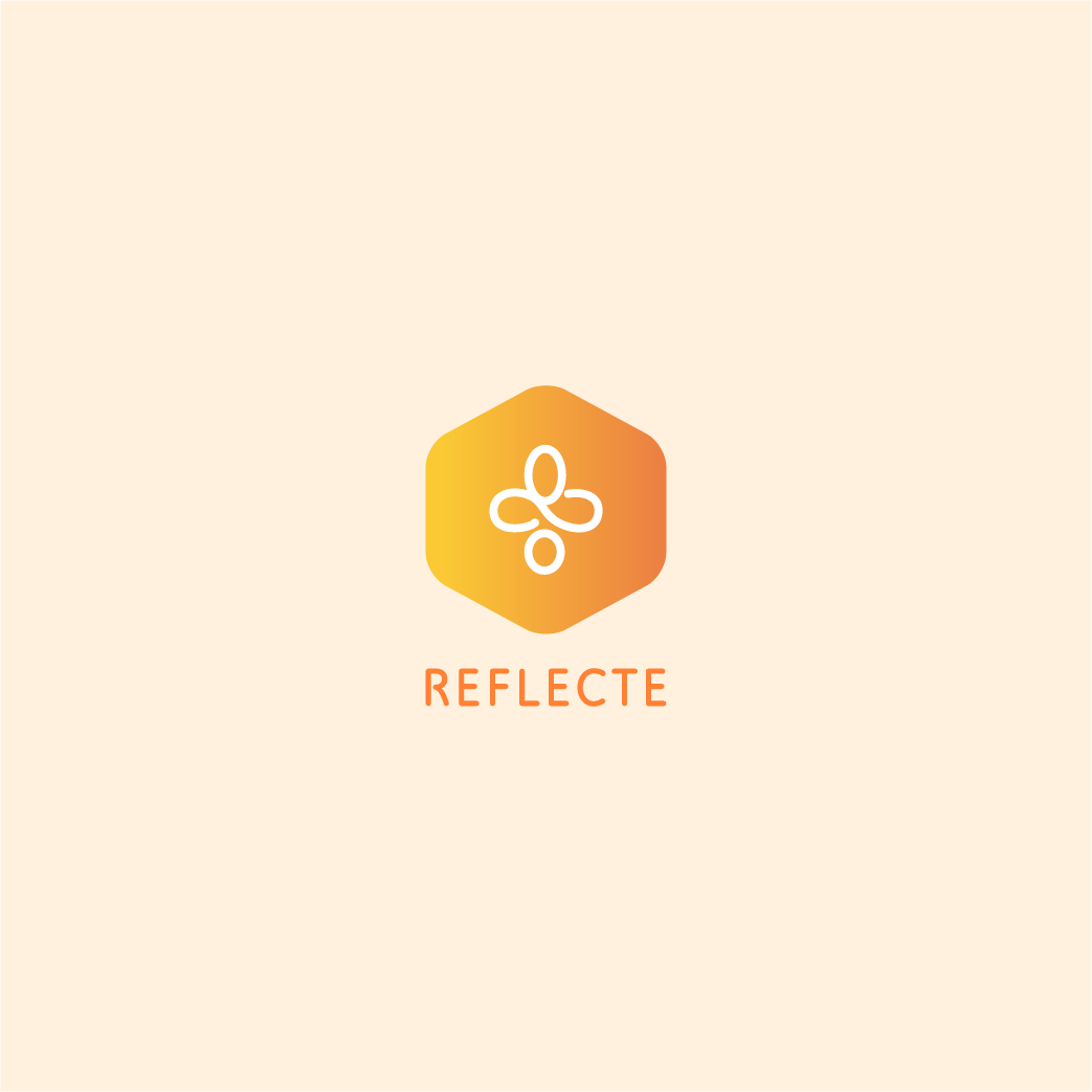 Reflecte presentation