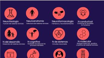Las ramas de las neurociencias