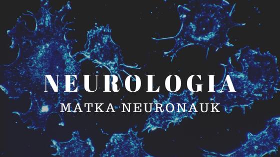 Ilustracja tytułowa: neurologia