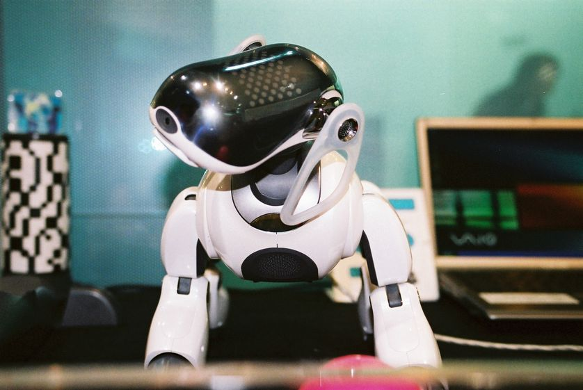 AIBO, Sony's robotic dog