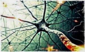 foto-valutazione-neuropsicologica