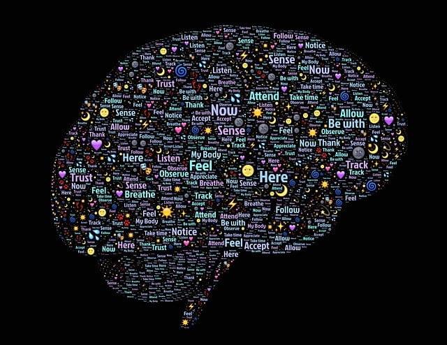 Los cuadros afásicos tras el Daño Cerebral son observables en ambas lenguas en la totalidad de los casos que llegan a nuestros centros, pudiendo presentar alteraciones diferentes para cada una de ellas