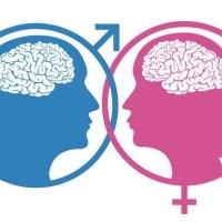 ۱۹ حقیقت باور نکردنی درباره رابطه جنسی و عشق/نقش عملکردهای مغزی