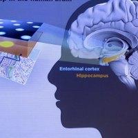 غیرفعال شدن بخشهایی از مغز با استفاده از اپلیکیشنهای مسیریاب