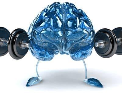 brain-mishkolot