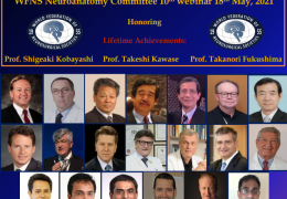 NOW LIVE….Day #2 of the WFNS 10th Webinar in Neuroanatomy…… NOON GMT