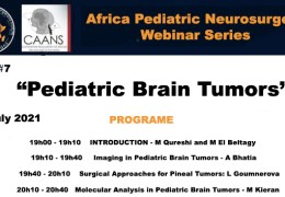 RECORDED, LIVE, 13 JULY 2021…..Africa Pediatric Neurosurgery presented a Symposium on Brain Tumors