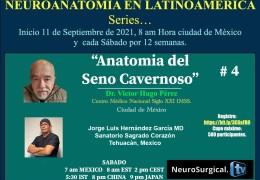 AHORA, VIVO, VIVO, VIVO……..SATURDAY, 7 am tiempo Mexico, #4 del Series de Neuroanatomy con Victor Hugo Perez Perez MD