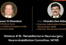"""Friday, 2 pm Cairo time, """"Rehabilitation in Neurosurgery"""" LIVE from the WFNS"""