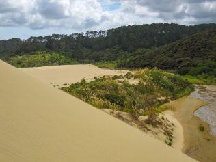 Steile Sandabhänge an den Sanddünen von Te Paki