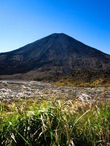 Mount Ngauruhoe mit Gras im Vordergrund
