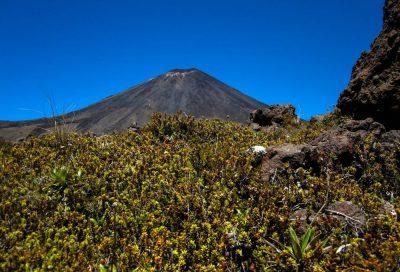 Ausblicke auf dem Tongariro Alpine Crossing