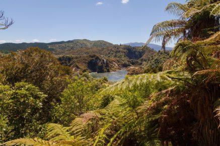 Überblick über den Park Waimangu Volcanic Valley