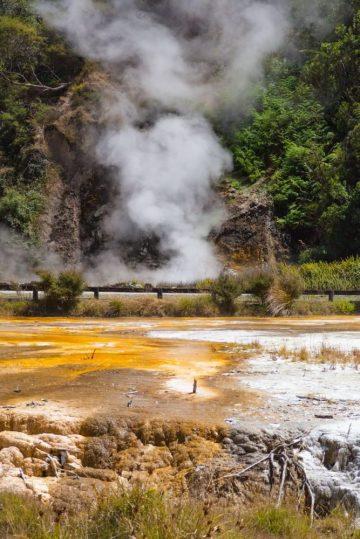 Wasserdampf und Kalktereassen - Waimangu Volcanic Valley