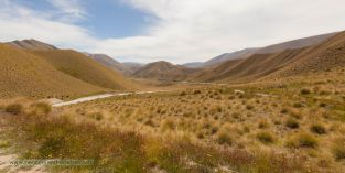 Tussock Büschelgräsern auf dem Lindis Pass