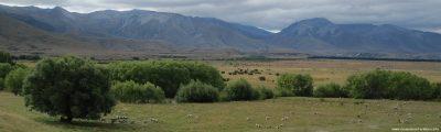 45 Tage Neuseeland - So viele Ziele, so wenig Zeit