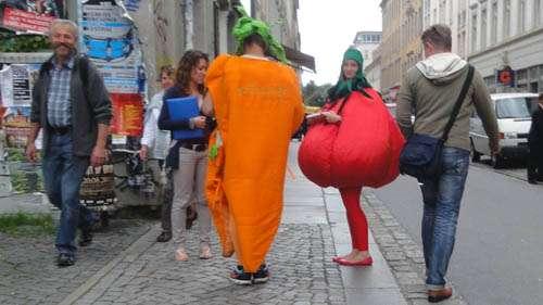 Barockes Gemüse auf der Alaunstraße