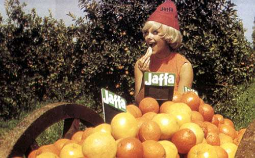 "Filmszene aus ""Jaffa - The Orange's Clockwork"""