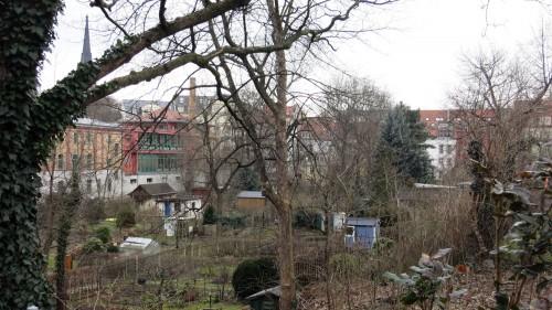 """Kleingartensparte """"Prießnitzaue"""" im Hintergrund das Stadtteilhaus."""