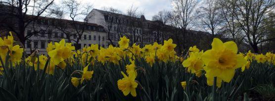 Alaunplatz im März 2014