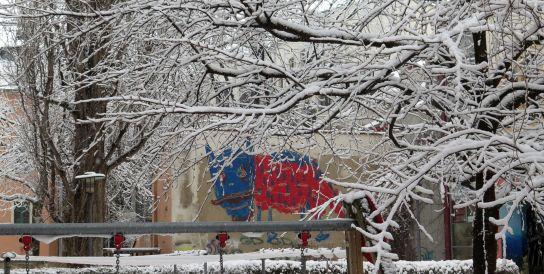 Mit Schnee-Zweig-Umrahmung guckt das Untier am Nordbad schon deutlich weniger grimmig.