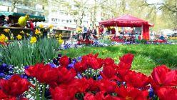 Frühlingsfest auf der Hauptstraße.