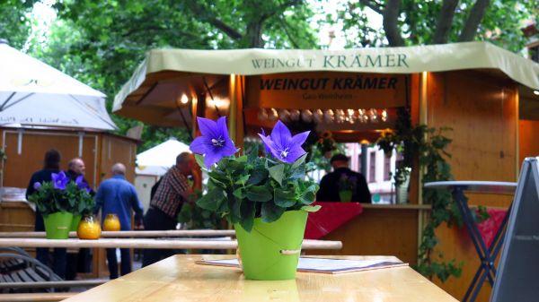 22 Weingüter präsentieren sich auf der Hauptstraße.
