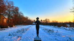 Morgendliche Bläue liegt über dem verschneiten Garten.