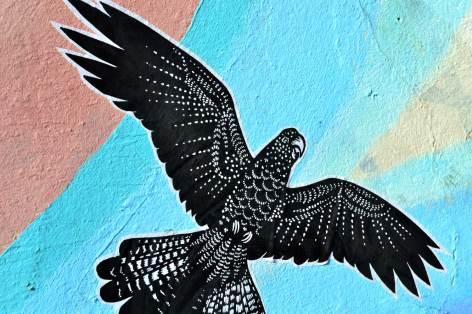 Mauer-Vogel