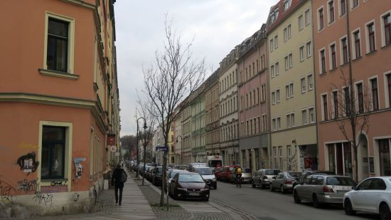 Befallene Weißdorn-Bäume auf der Hechtstraße