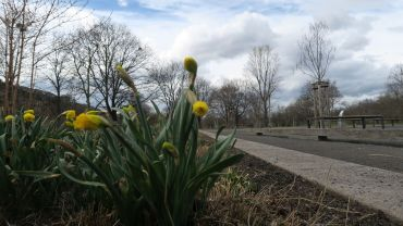 Frühlingsgefühle am Alaunplatz