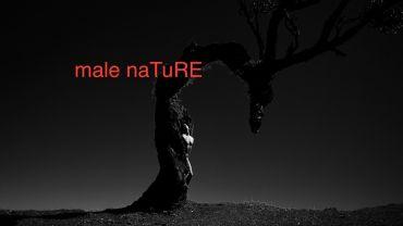 Ausstellung Male Nature von Marc Antonio