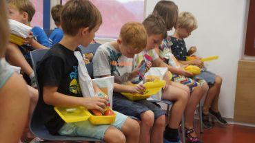 Die Kinder bei der Inspektion der Bio-Markenprodukte