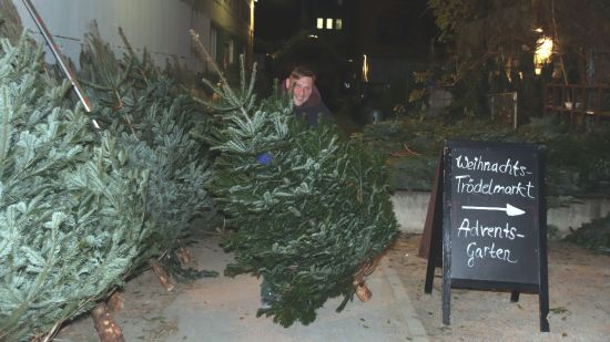 Weihnachtsbaumverkäufer Sven Hellmich