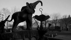 Die koloniale Geschichte Dresdens am Carolaplatz