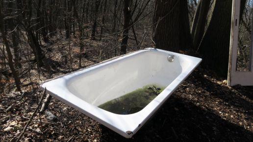 Wer schleppt eigentlich eine Badewanne in den Wald?