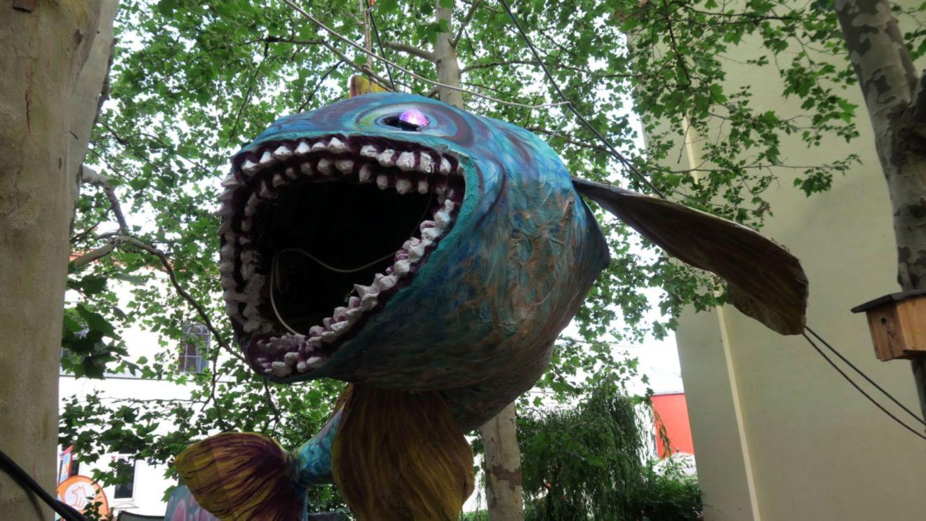 Einer der Süßwasserfische