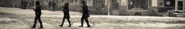 Winterliches Bild von Katja