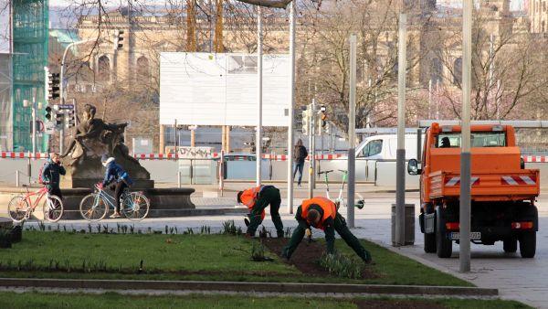 Mitarbeiterinnen und Mitarbeiter des Grünflächenamtes pflanzen neue Frühjahrsblüher wie Narzissen, Tulpen und Hyazinthen.