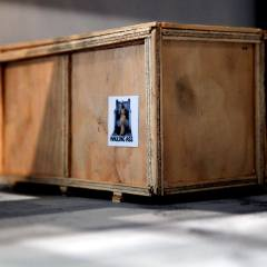 Peggy's Grotto: Hauling Ass Cargo Crate // Wood, acrylic paint and cardboard // Dimensions variable // 2011