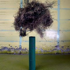 Levitating Tumble Weed // Plastic Piping, Dried Weeds, Cat Gut // 50 x 130 cm // 2008
