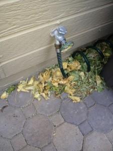 hose connection