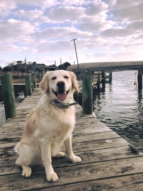 Carly Q sitting on dock