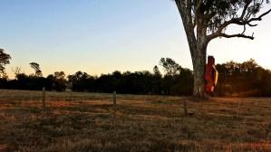 Never Ending Honeymoon | Rathdowne, NSW, Australia